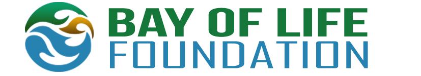 bay of life foundation