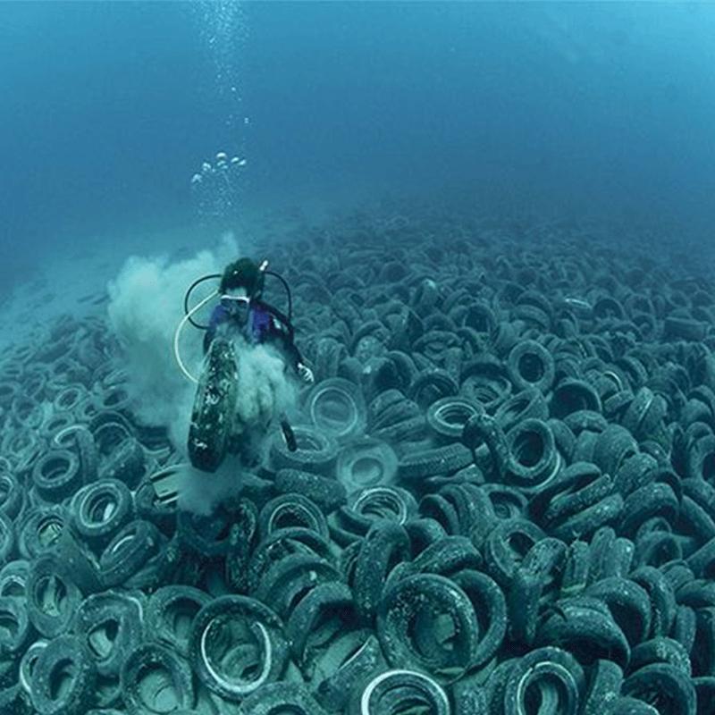 ocean conservation chennai tamilnadu